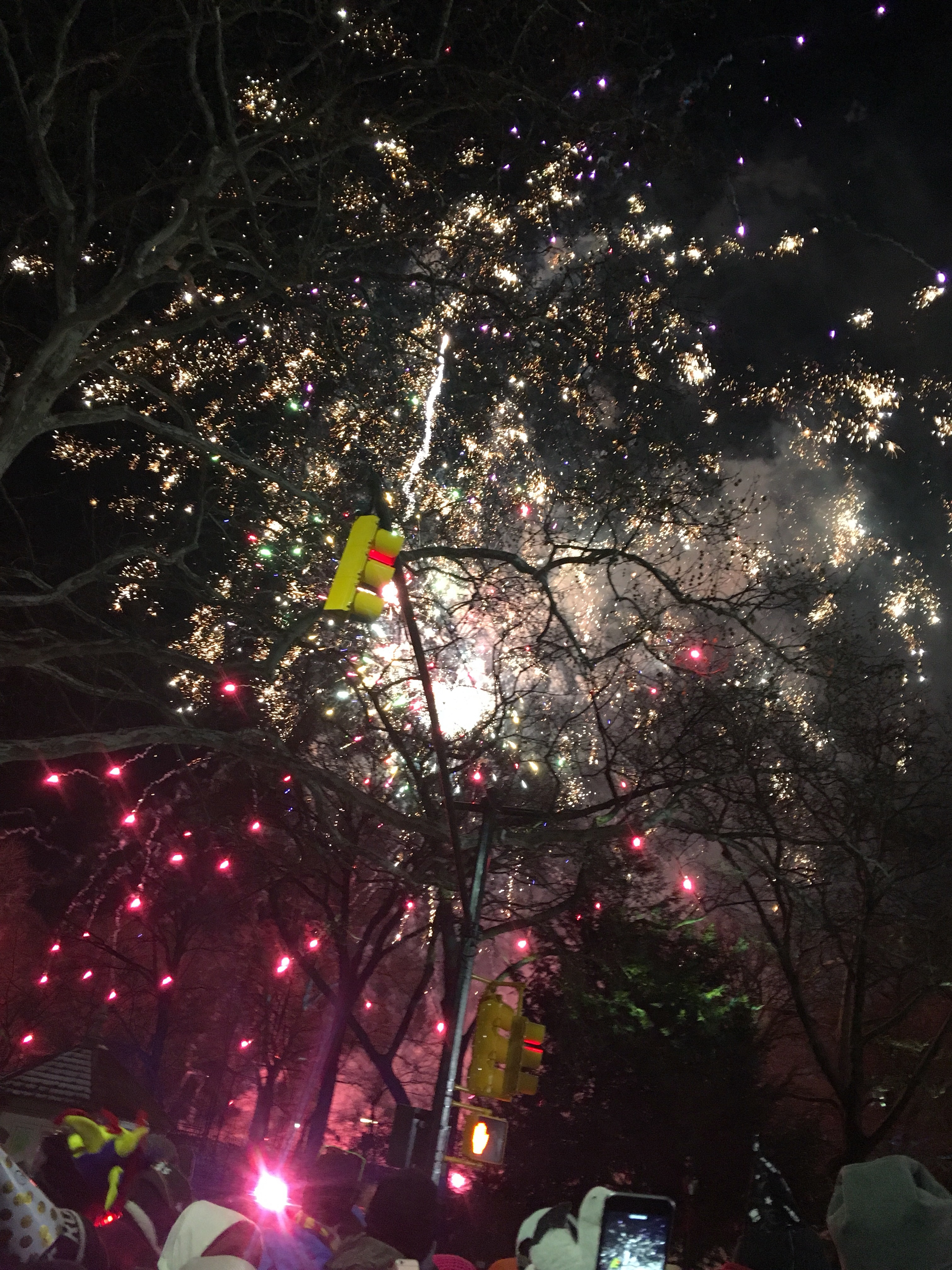 Fireworks at the NYRR Midnight Run in Central Park